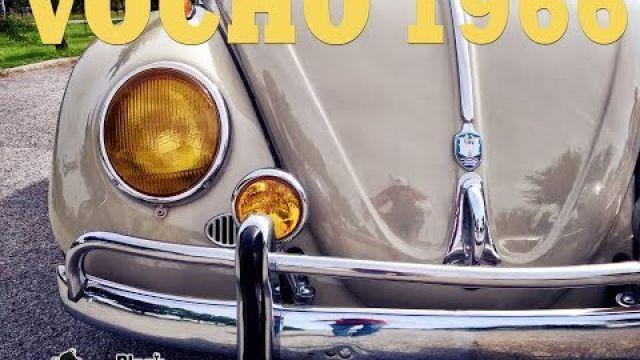 Vocho 1966